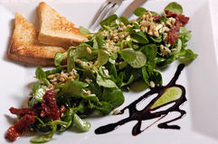 Vegetariersalat Stockfotos