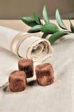 Vegetarisch suikergoed Royalty-vrije Stock Foto