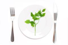 Vegetarisch voedselconcept Stock Foto