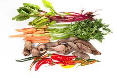 Vegetarische Bestandteile Stockfotos