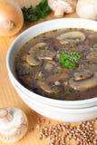 Vegetarische Buchweizensuppe mit Pilzen Lizenzfreie Stockfotografie