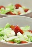 Vegetarische fettasalade Stock Foto