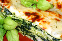 Vegetarische Lasagne mit ricotta Käse-Spinat fil Lizenzfreie Stockbilder