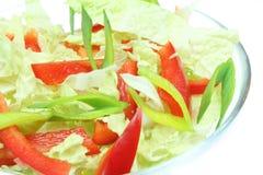 Vegetarische salade Royalty-vrije Stock Afbeelding