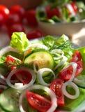Vegetarische Salade Royalty-vrije Stock Foto