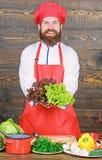 Vegetarische salade met verse groenten Het op dieet zijn natuurvoeding Culinaire keuken vitamine Gelukkige gebaarde mens chef-kok stock afbeeldingen
