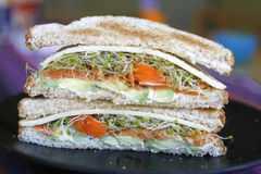 Vegetarische Sandwich Stock Foto
