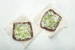 Vegetarische Sandwiche machten von den Mikrogrüns und von den Ölen auf einem weißen Hintergrund Vitamine, Gewichtsverlust und Ene lizenzfreies stockfoto