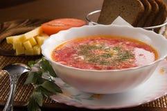 Vegetarische soep Royalty-vrije Stock Foto's