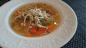 Vegetarische soep Stock Afbeeldingen