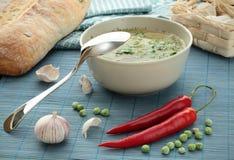 Vegetarische soep Stock Foto's