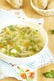 Vegetarische Suppe Stockfotos