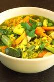 Vegetarische Suppe Lizenzfreies Stockbild