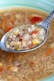 Vegetarische Suppe mit Reismelde, Reisrot, gelbe Linsen, Mais, Elan Stockfotos