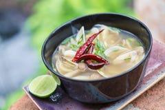 Vegetarische thailändische Lebensmittelpilz-Tom-yum Suppe Stockfotos