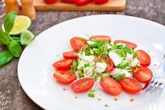Vegetarische tomatensalade met Mozarella Royalty-vrije Stock Afbeelding