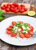 Vegetarische tomatensalade met Mozarella Stock Foto's