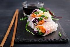 Vegetarische vietnamesische Frühlingsrollen mit würziger Soße, Karotte, Gurke lizenzfreies stockbild