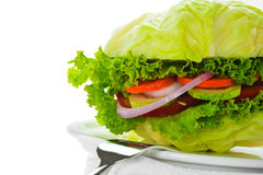 Vegetarischer Burger Lizenzfreie Stockfotos