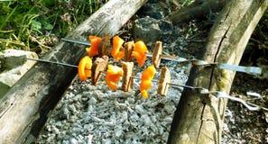 Vegetarischer Kebab des Pfeffers Stockfoto