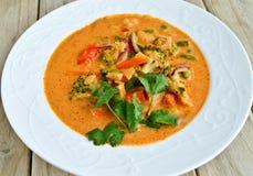 Vegetarischer roter thailändischer Curry Lizenzfreies Stockbild