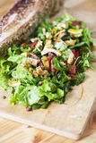 Vegetarischer Salat Lizenzfreies Stockbild