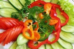 Vegetarischer Salat stockfotografie