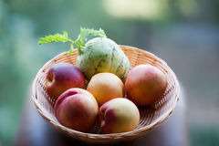 Vegetarisches Frühstück Lizenzfreies Stockbild
