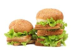 Vegetarisches Mittagessen Stockfotografie