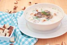 Vegetarisk champinjonkräm-soppa med champignons royaltyfria bilder
