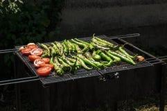 Vegetarisk grillfest Royaltyfria Foton