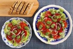 Vegetarisk sallad Royaltyfri Foto