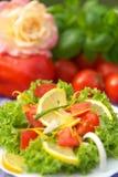 Vegetarisk sallad royaltyfri bild