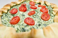 Vegetarisk salladkaka med fillobakelse, spenat, ricottaost och tomater Arkivfoto