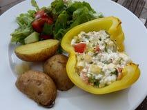 Vegetariskt mål med gul peppar Royaltyfria Bilder