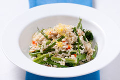 Vegetatian risotto Royalty Free Stock Photos