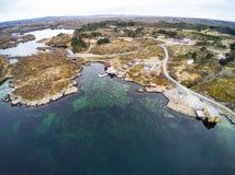 Vegetatie van de kust van Noorwegen in de vroege lente stock foto's