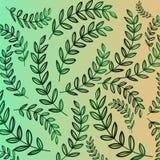 Vegetatief patroon - groene gradiënt van tak met bladeren Florarachtergrond Stock Foto's
