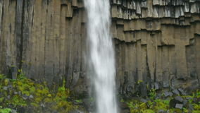 Vegetation and basalt rocks together with falling waters of the Svartifoss, Iceland stock video