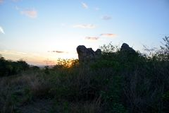 Vegetation of the Brazilian northeast semi-arid illuminated with the warm colors of the sunset royalty free stock photos