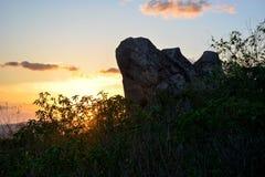 Vegetation of the Brazilian northeast semi-arid illuminated with the warm colors of the sunset stock image