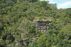VEGETATION COVERING RUGGED CLIFFS OF ORIBI GORGE CANYON. View of cliffs and vegetation on far side of Oribi Gorge canyon wall in Kwazulu Natal Stock Image