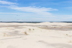 Vegetation on the dunes at Lagoa do Peixe National Park stock image