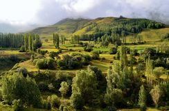Vegetation, Ecosystem, Nature Reserve, Highland stock photography
