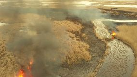 Vegetation fire in the Danube Delta. Aerial view stock video footage
