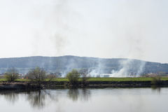 Vegetation fire on the shore. Photographic scene showing some burnt vegetation on Mures river bank. On a closer look one can see the desolated scene enhanced by royalty free stock photos