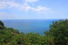 Vegetation framme av havet Royaltyfria Foton