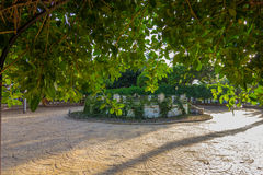Vegetation and gardens Park Nicolas Salmeron in Almeria, Spain Stock Images