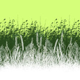 Vegetation illustration Stock Photos