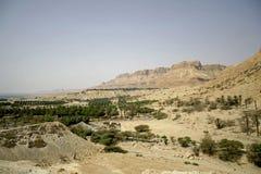 Free Vegetation In Desert Landscape Stock Image - 3182641